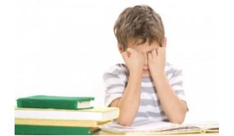 Špecifické poruchy učenia možno naprávať aj z domu! A hravo a zábavne!